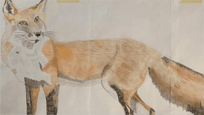 I disegni di Viola – 10 anni